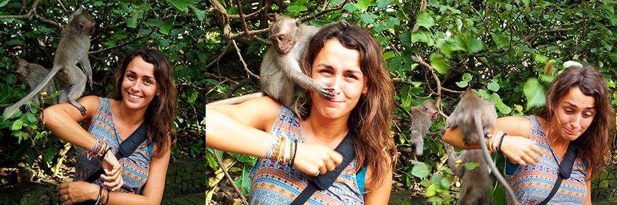 MonkeyUbud